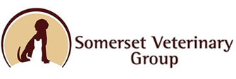 Somerset Veterinary Group
